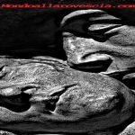 Domenica in Poesia: Il dolore ai tempi dell'aulin