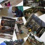 L'uragano Sandy mette in ginocchio l'America del Sud