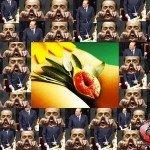 """Berlusconi l'ossessione per la figa e il """"sistema mignottocratico"""""""