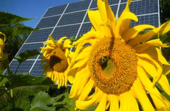 sostenibilità-fonti-rinnovabili-indipendenza-energetica-fonti-energetiche-alternative