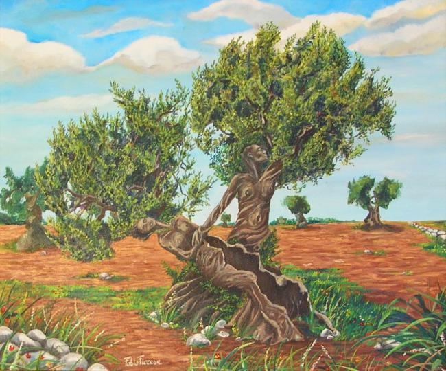 ulivo-dipinto