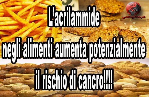 acrilammide-cancro