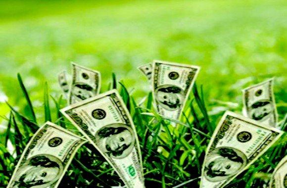 soldi-ambiente