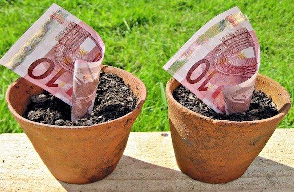 terra-soldi