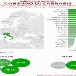 In Italia consumo di cannabis da record, siamo terzi in Europa