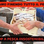 Rischiamo un mare senza pesci, stop a pesca insostenibile