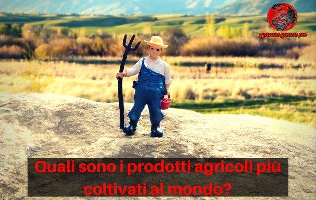 prodotti agricoli più coltivati