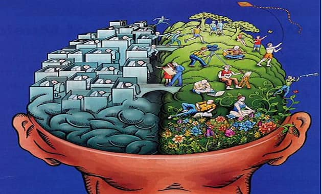 emisfero cerebrale