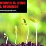 Chi produce il cibo nel mondo?