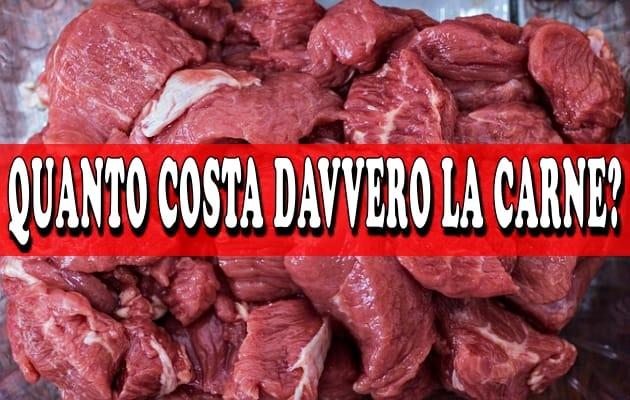 quanto costa davvero la carne
