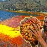 Fritti dall'olio di palma