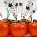 Un terzo della frutta e della verdura che mangiamo è contaminata