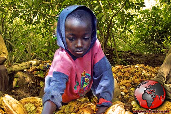 lavoro minorile cacao
