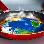 Lettera delle associazioni ambientaliste e della green economy a Matteo Renzi