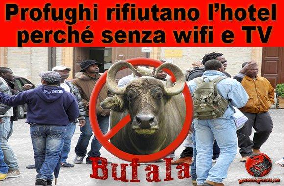 profughi-wifi