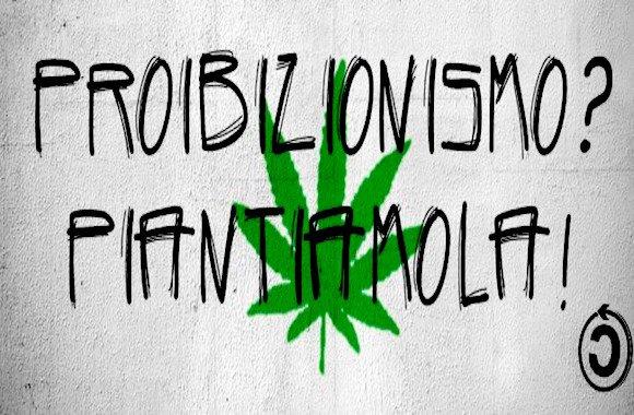 legalizzazione droghe leggere