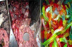 gelatina-animale