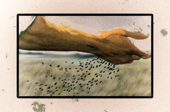 Poesia di Carlos Nejar
