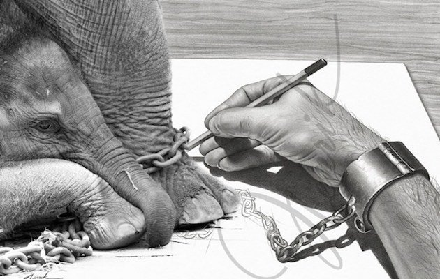 elefante incatenato